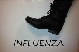Influenza AHP accel Blog pic2